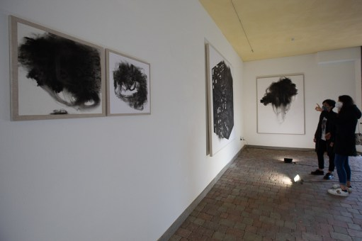 Veduta della mostra di Giulia Dall'Olio, Ierofanie vegetali. Ph. Elisa Magnoni