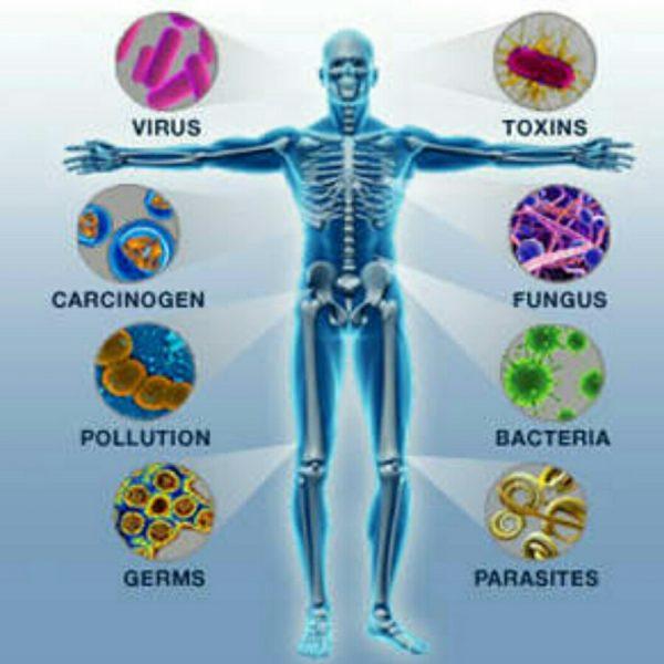Medicamentos para câncer pode ajudar a compreender doenças autoimunes