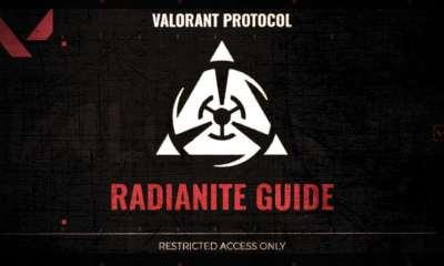 3 radianiteguide