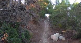 mitja marato conill terreny