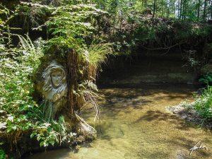 esprit-nature