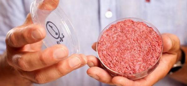 vers de terre dans les hamburgers