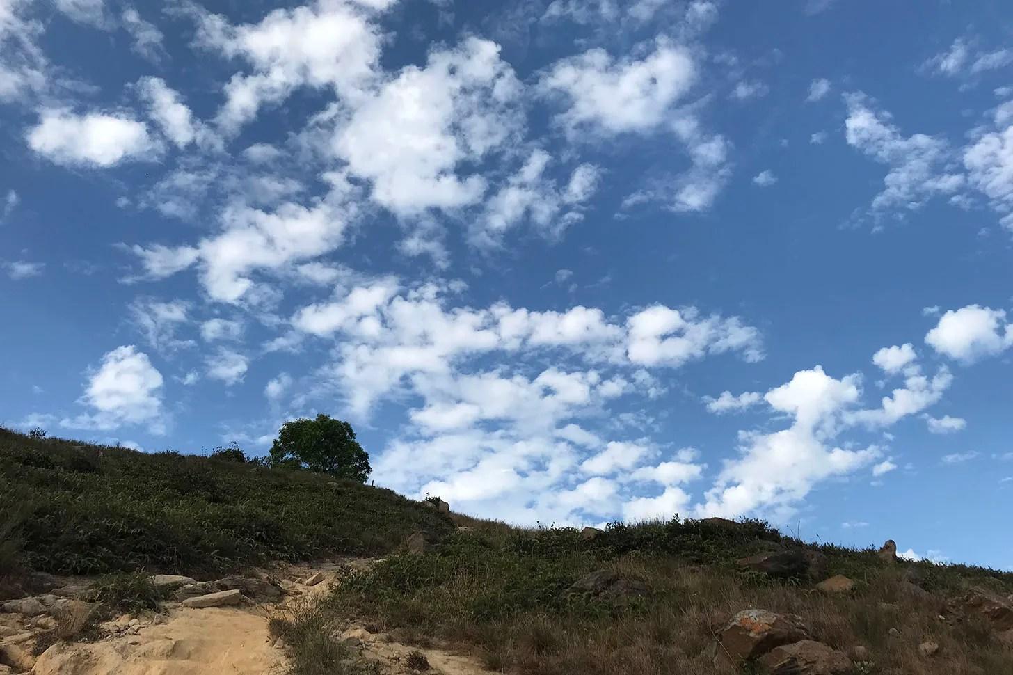 【兄弟爬山系列】香港行山路線推介丨關於牛以外的元朗髻山