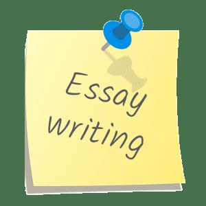 professional essay service