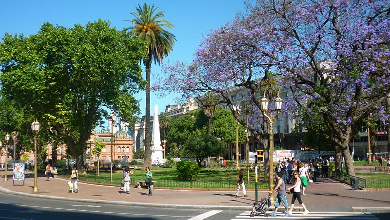 Plaza de Mayo - Buenos Aires a pé (Foto: Esse Mundo É Nosso)