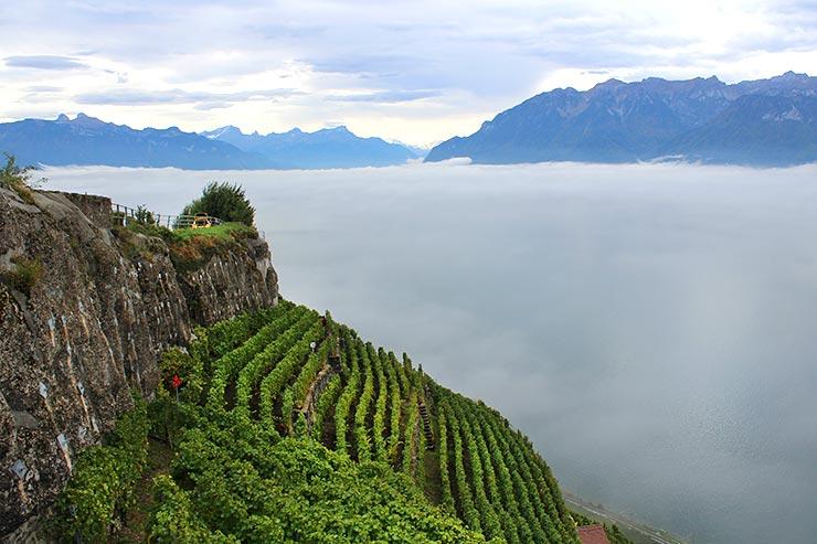 Vinícolas de Vevey, Suíça (Foto: Esse Mundo É Nosso)