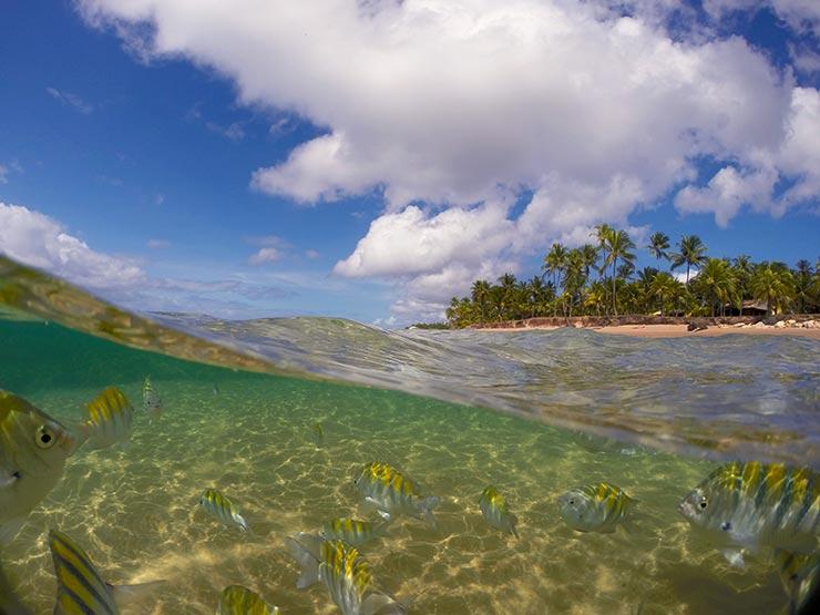 Cidades de praia na Bahia - Taipu de Fora (Foto; Esse Mundo é Nosso)