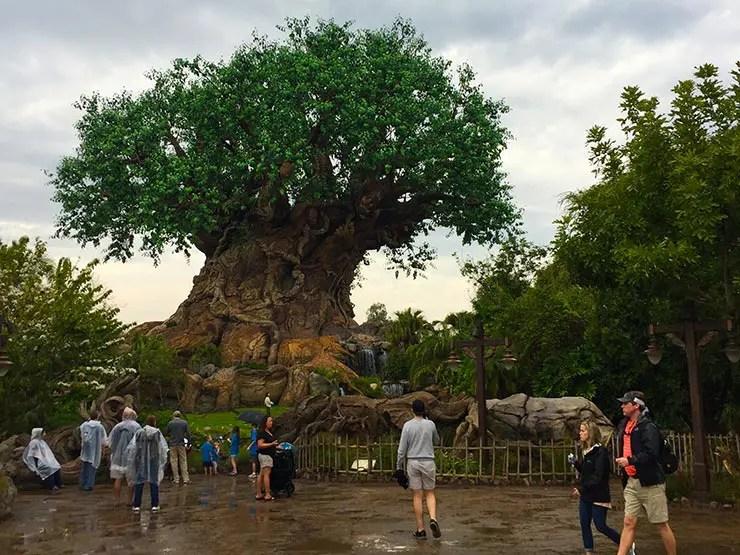Quanto Custa Viajar pra Disney (Foto: Esse Mundo é Nosso)