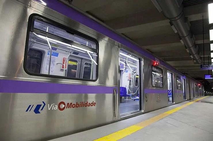 Como ir ao Parque do Ibirapuera de metrô (Foto: Divulgação/ViaMobilidade)