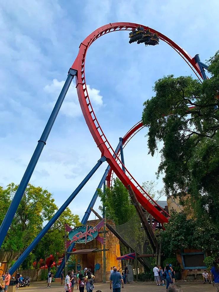 Tigris: A nova montanha-russa do Busch Gardens (Foto: Esse Mundo é Nosso)