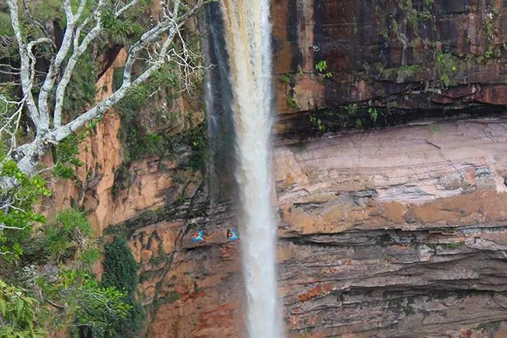 Araras na Cachoeira Véu de Noiva (Foto: Esse Mundo É Nosso)