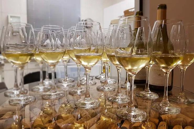 Degustação de Chardonnay na Vinícola em Gramado: Visita à Ravanello (Foto: Esse Mundo É Nosso)