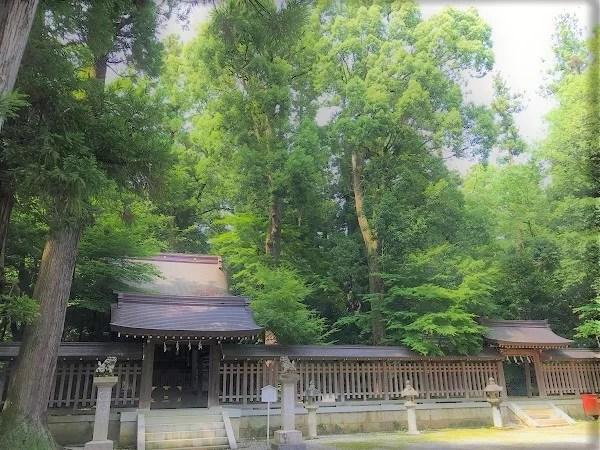 日向神社本殿