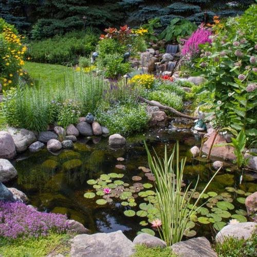 Backyard Pond Liners