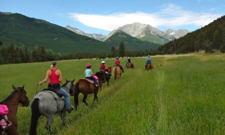 Riding holidays for tots, tweens and teens who are big on adventure