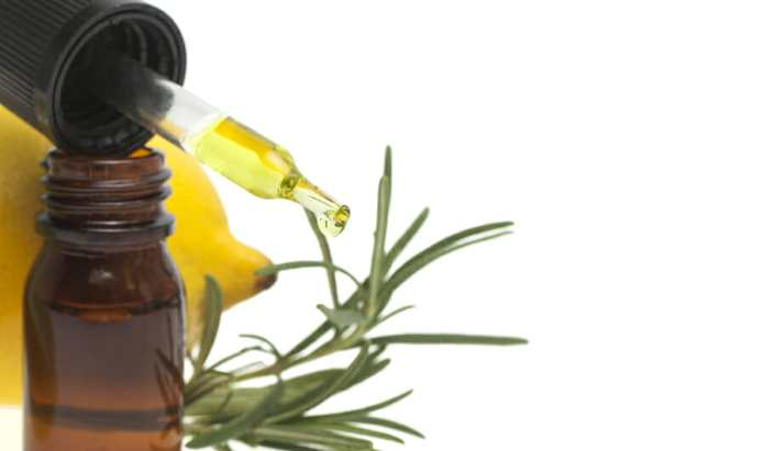 Lemon essential oil, lemon fruit and rosemary on white background