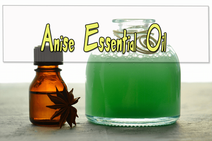 Anise Essential Oils for Aromatherapy