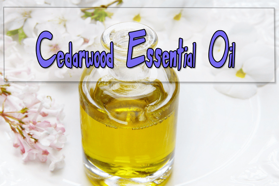 Cedarwood Essential Oils for Aromatherapy
