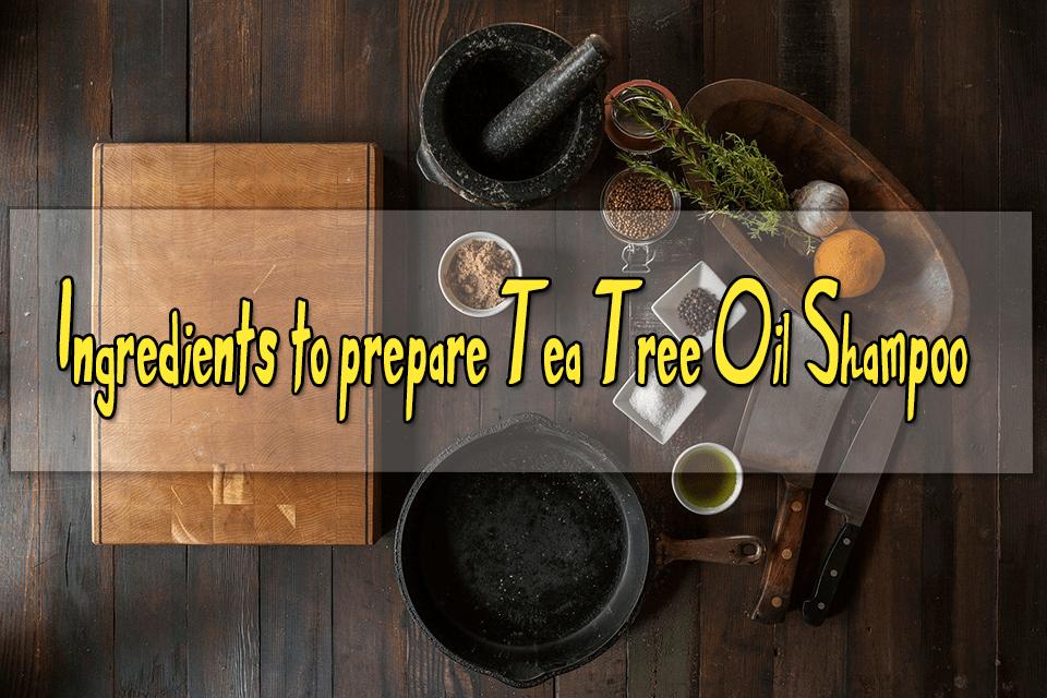 ingredients to prepare tea tree oil shampoo