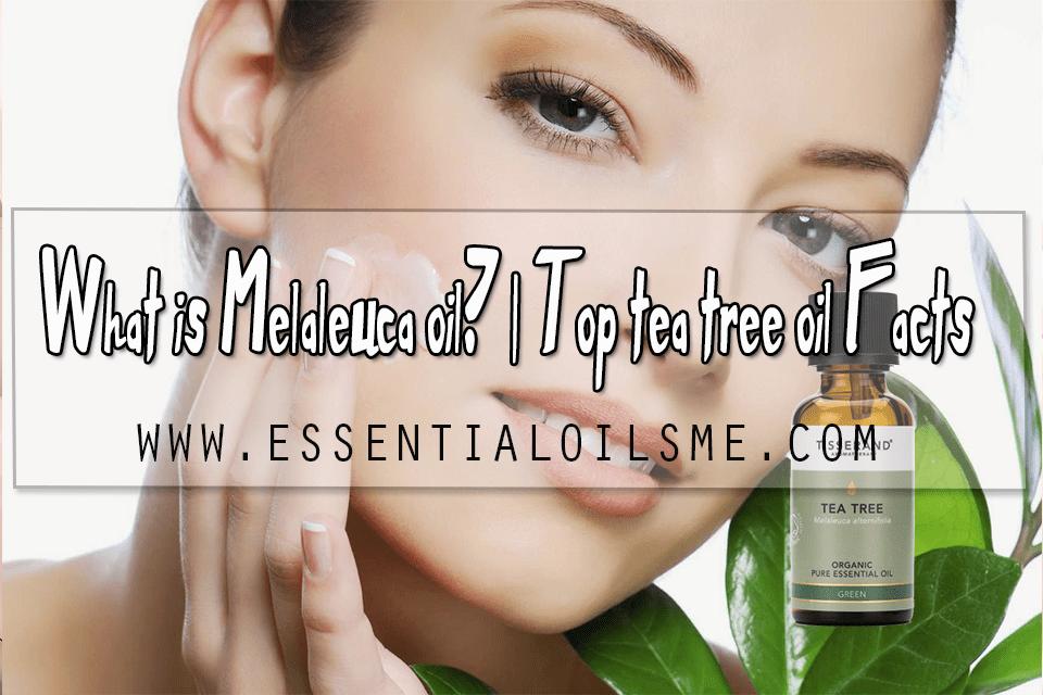 What is Melaleuca oil