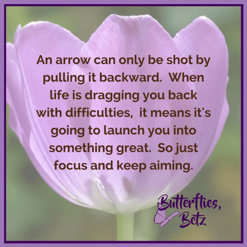 Quote: An arrow can only be shot by pulling it backward. When life is dragging you back with difficulties, it means it's going to launch you into something great. So just focus and keep aiming.