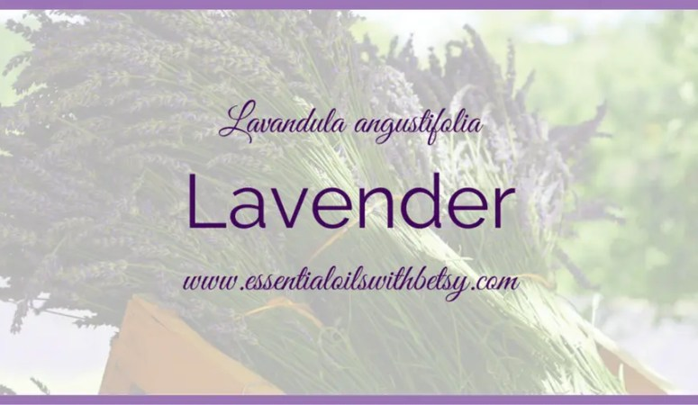Ways To Use doTERRA Lavender Essential Oil