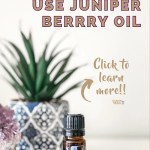 Ways You Can Use doTERRA Juniper Berry Essential Oil