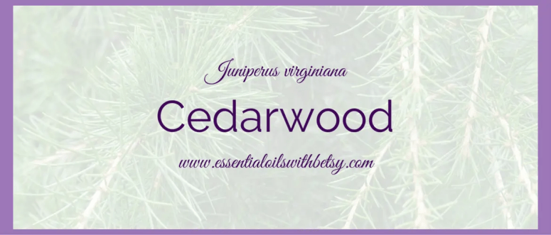 To use Cedarwood to promote restful sleep, we diffused Cedarwood in the diffuser. Because it's a thick oil, and because he was a baby at the time, we only used 3 drops in the diffuser instead of the normal five. You could do even less for a newborn, starting with diffusing just one drop overnight. Always leave the door open in a small room when diffusing with babies and young children, the essential oils are powerfully effective, but they are little and don't need as much as adults. Same as with anything else!