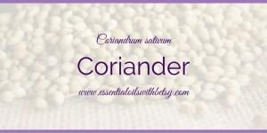 doTERRA Coriander Essential Oil Usage (With PDF)