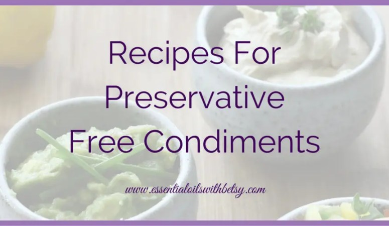 Preservative Free Dips,  Sauces,  and Spice Mixes