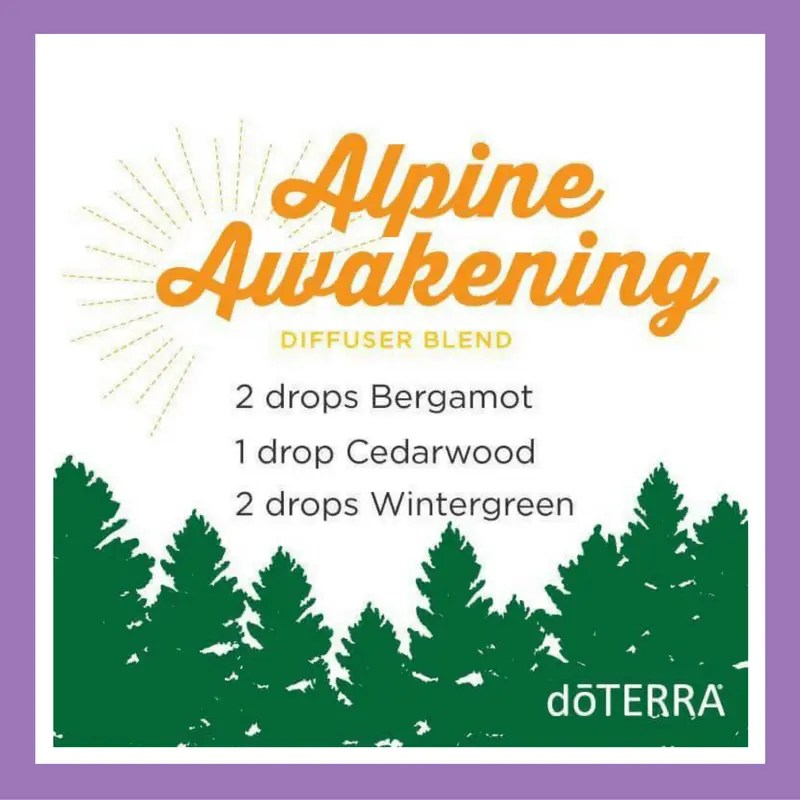 27 doTERRA diffuser blends | Alpine Awakening - 2 drops Bergamot 1 drop Cedarwood 2 drops Wintergreen