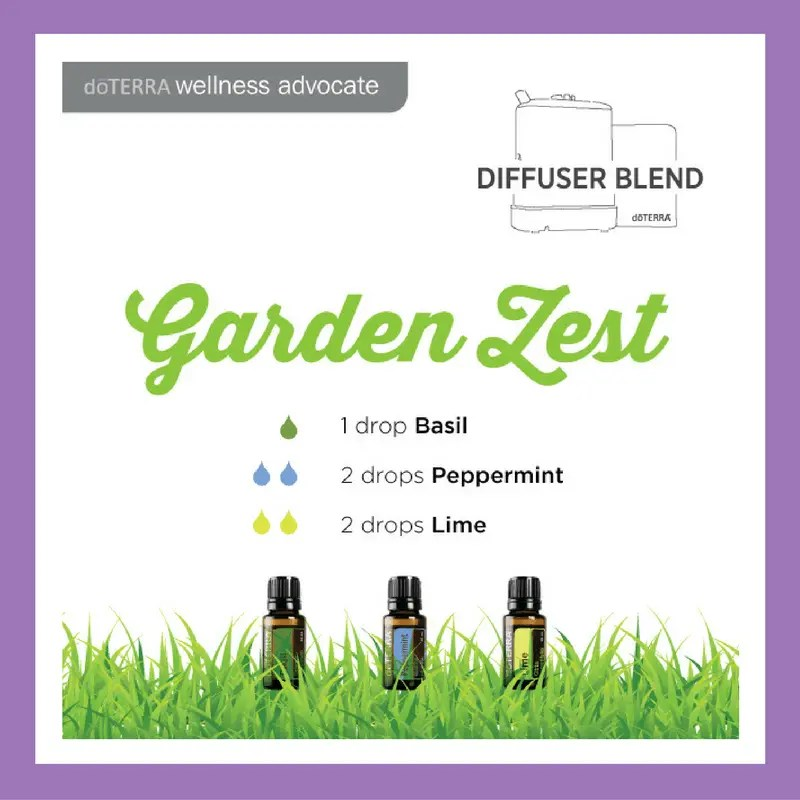 Garden Zest - 1 drop Basil 2 drops Peppermint 1 drop Lime | 27 doTERRA diffuser blends |