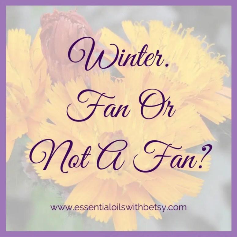 Social media engagement graphic Winter. Fan Or Not A Fan?