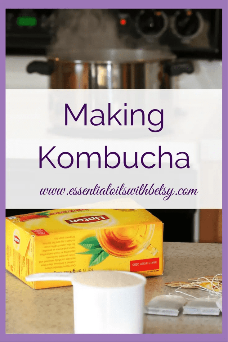 What Do I Need To Make Kombucha? To make kombucha you need a large saucepan, water, large glass jar (affiliate link), black tea, organic sugar, a paper towel or breathable cloth, and a healthy scoby!