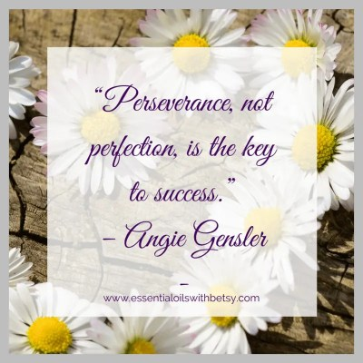 Perseverance, not perfection, is the key to success.