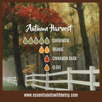 Autumn Harvest Fall Diffuser Blend: Cardamom, Orange, Cinnamon, Clove