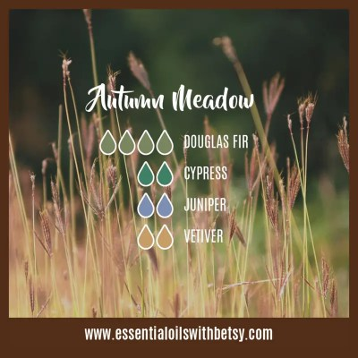 Autumn Meadow Diffuser Blend: Douglas Fir, Cypress, Juniper, Vetiver