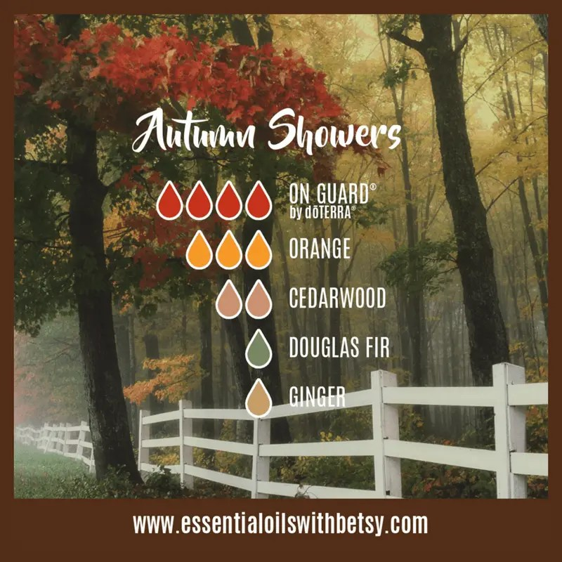 Autumn Showers Oil Blend: OnGuard, Orange, Cedarwood, Douglas Fir, Ginger