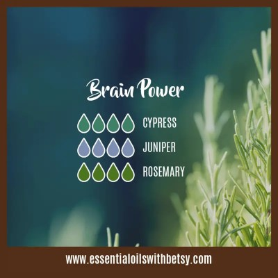 School Diffuser Blends Brain Power: Cypress, Juniper, Rosemary