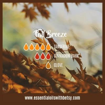 Fall Breeze: Tangerine, Cinnamon, Clove