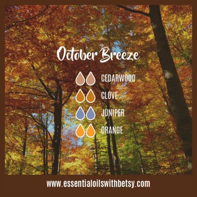 October Breeze Fall Diffuser Blend: Cedarwood, Clove, Juniper, Orange