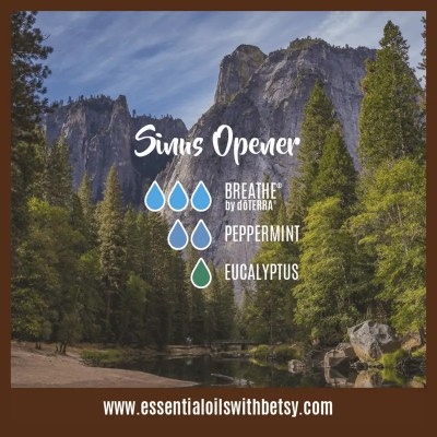 Sinus Opener Diffuser Blend: Breathe, Peppermint, Eucalyptus
