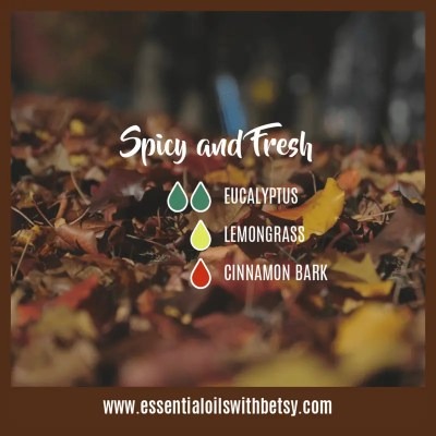 Spicy and Fresh Fall Diffuser Blend
