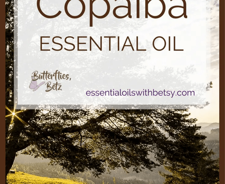 doTERRA Copaiba Essential Oil doTERRA Copaiba essential oil is one of our new oils from doTERRA.  It was introduced at the 2017 doTERRA convention.  We have a wonderful lineup of new oils coming to doTERRA.  But doTERRA Copaiba Oil really tops it off.  Copaiba is the oil I'm most excited to try.  Read this post to learn how to use doTERRA Copaiba oil.  Find out where to buy Copaiba essential oil.  I'm very excited about the addition of doTERRA Copaiba essential oil for several reasons! How Can I Use Copaiba Essential Oil?