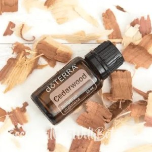 Buy doTERRA Cedarwood