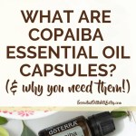 What Are Copaiba Essential Oil Capsules & Why You Need them