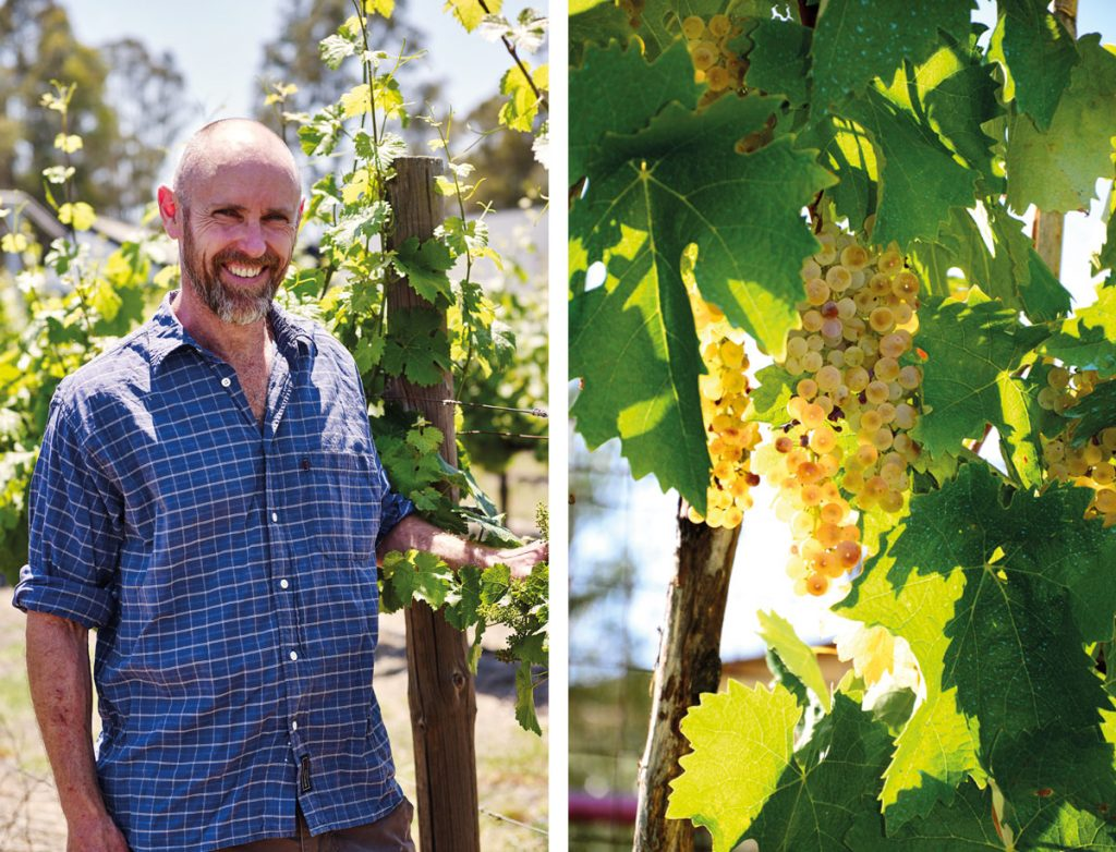 Central Victorian winemaker Matt Kilby is one to watch
