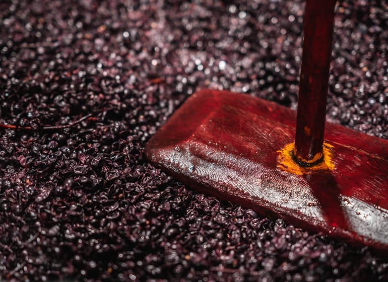 Plunging ferments at Cassegrain Wines