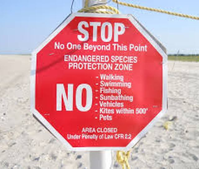 Avoiding A Conviction For Public Lewdness At Gunnison Beach Sandy Hook Nj