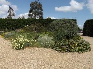Beth Chatto Gardens (48)